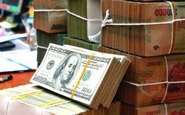 Bloomberg: Tỷ giá USD/VND có thể còn điều chỉnh