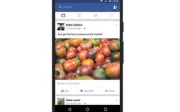 Facebook cho xem News Feed, bình luận ngay cả khi không có Internet