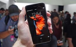 """Lý do Apple chọn cá chọi làm """"linh vật"""" cho iPhone 6s/6s Plus"""