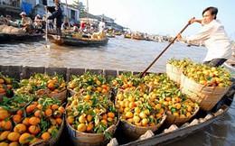 Trong bức tranh ảm đạm của các nền kinh tế mới nổi, Việt Nam vẫn là điểm sáng