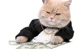 Tôi đã biến 15 triệu đồng thành 2,5 triệu USD như thế nào?