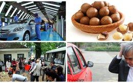 [Nổi bật] 'Có dại dột mới đi sản xuất ô tô made-in-Vietnam', VietinBank chưa sáp nhập Ocean Bank, GPBank