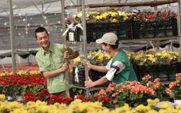 Chuyện một 'người Hà Lan điên' đưa Việt Nam lên bản đồ hoa thế giới