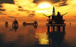 Giá dầu giảm hơn 10% trong tuần