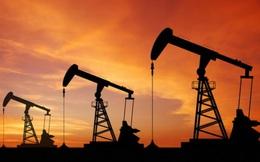 """""""Giá dầu sẽ chạm mốc 95 USD/thùng sau.. 25 năm nữa"""""""