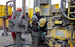 Giá dầu giảm, doanh nghiệp đồng loạt sa thải nhân viên