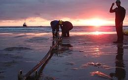Đến lúc nên nói lời chia tay với tuyến cáp quang biển AAG?