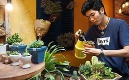 Nghệ thuật Terrarium và những kiến trúc sư trẻ Hà Nội