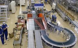 Dự báo tình hình kinh doanh: DNNN lạc quan hơn doanh nghiệp FDI
