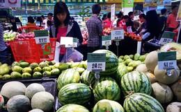 Vì sao dưa hấu tại ruộng 2.500 đồng/kg, vào siêu thị thành 18.000 đồng/kg?