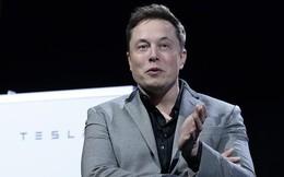 """Elon Musk mở trường học riêng vì """"nền giáo dục hiện tại quá kinh khủng"""""""