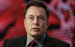 Làm sao để sống sót khi phỏng vấn tìm việc với Elon Musk?