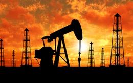 [Q&A] 7 câu hỏi để hiểu từ A-Z về giá dầu thế giới năm 2014 (P.1)