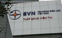 """Tập đoàn Điện lực Việt Nam đang """"đội sổ"""" danh sách nợ nước ngoài"""