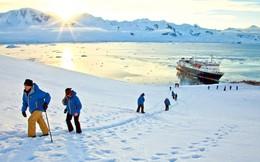 Bài học cuộc sống từ chuyến thám hiểm Nam Cực của Ernest Shackleton