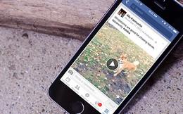 Video trên Facebook tự động chạy gây phiến phức, làm sao để tắt chức năng này đi?