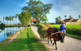 World Bank cấp thêm 100 triệu USD cho hoạt động giảm nghèo tại 6 tỉnh của Việt Nam