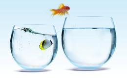 Cải cách môi trường kinh doanh: Đời thay đổi khi chúng ta thay đổi!