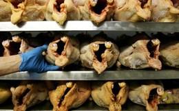 Xem xét điều tra toàn diện việc đùi gà đông lạnh Mỹ bán phá giá