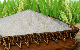 """Gạo Việt sẽ thành thương hiệu """"hàng đầu thế giới"""""""