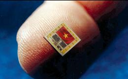 Sắp có Silicon Valley do Việt kiều làm chủ đầu tư tại TP.HCM
