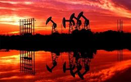 Giá dầu lao dốc mạnh trở lại