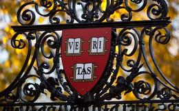 Đại học Harvard cho phép sinh viên đăng ký giới tính thật