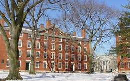 Vì sao Harvard là đại học phi lợi nhuận nhưng vẫn 'rót tiền' vào bất động sản?