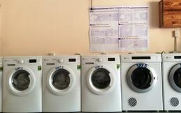 Sếp cũ Metro Việt Nam chuyển nghề cho thuê máy giặt