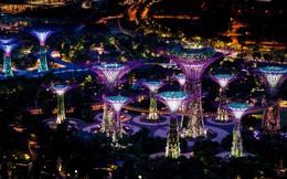 12 lý do biến Singapore thành nơi làm việc trong mơ của bạn