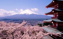 Vì sao năm 2014 người châu Á đổ xô đến du lịch Nhật?