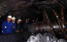 Vietnam Report: Khoáng sản – xăng dầu vẫn là ngành 'giàu nhất'