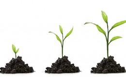 4 loại văn bản các nhà khởi nghiệp, startup nên sử dụng