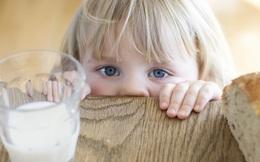Muốn truy thu thuế 8 doanh nghiệp sữa, Tổng cục Hải quan không thể chỉ dựa vào một 'Thông báo'