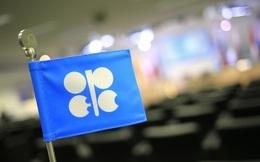 OPEC: Cần 10.000 tỷ USD để giá dầu không tăng vọt trong dài hạn
