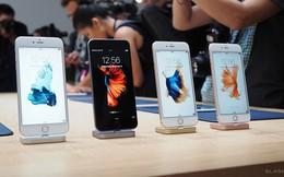 Người chụp ảnh cá chọi cho hình nền iPhone 6s là ai ?