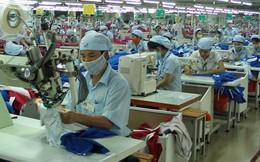 Hơn 20.000 công nhân được miễn phí ô tô về quê đón Tết