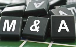 """Sáp nhập ngân hàng: Dấu hỏi quanh những cuộc """"hôn nhân"""" lớn"""