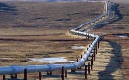 Cuộc đua bán dầu cho Trung Quốc