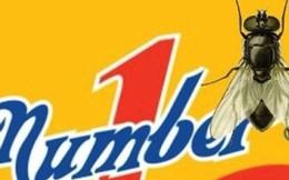 """Xét xử vụ """"con ruồi trong chai Number 1"""" vào ngày 17/12"""