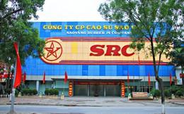 Không phải Vingroup, FLC, BRG… ai có được khu đất vàng Cao Su Sao Vàng?