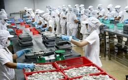 Seaprodex sắp chuyển thành công ty 100% tư nhân