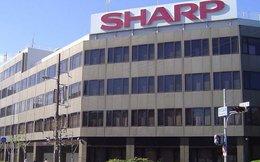 Tập đoàn Sharp sắp phá sản?