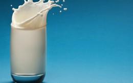 Thuế 0%: Đừng mong giá sữa giảm