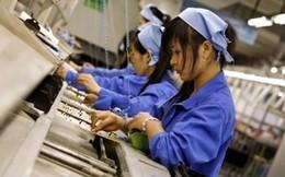 PMI tháng 1 đạt 51,5 điểm - số lượng việc làm gia tăng mạnh nhất trong 12 tháng