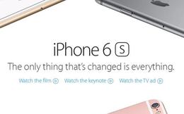 Tại sao Apple bán ra chiếc bút Pencil mà Steve Jobs căm ghét?