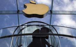 """Apple, Google bị phạt 400 triệu USD vì """"không lấy nhân viên của nhau"""""""
