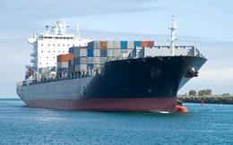 """20 hãng tàu biển lớn lọt """"tầm ngắm"""" thanh tra của Bộ Tài chính"""