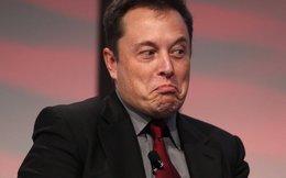 Larry Page: 'Elon Musk là kiểu người vô gia cư'
