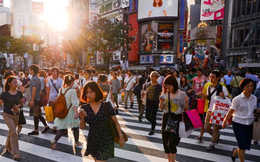 Những chuyện nhỏ giúp tôi hiểu sự thần kỳ Nhật Bản